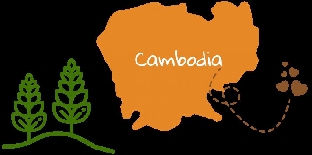 cambodia orange