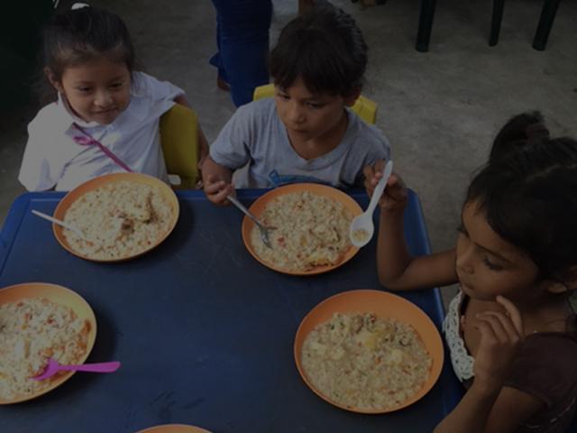 Feeding Programs