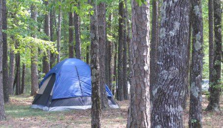 pinecrest-tent-1